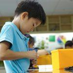 查德威克国际学校的学生玩拼模型