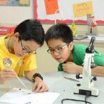 河内英国越南国际学校的2个学生在做实验