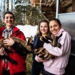 人文学院的3个学生抱着山羊宝宝
