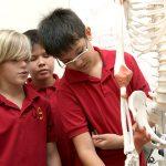 胡志明市德国国际学校的学生观察人体骨架模型