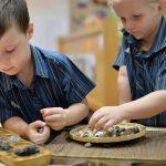 新加坡澳洲国际学校的学生把小石头放进盘子
