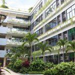 嘉德圣玛丽森林城市学校校园的教学楼