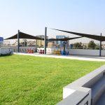 亚的斯亚贝巴国际社区学校的草坪