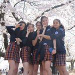 庆南国际外国学校的学生在樱花树下